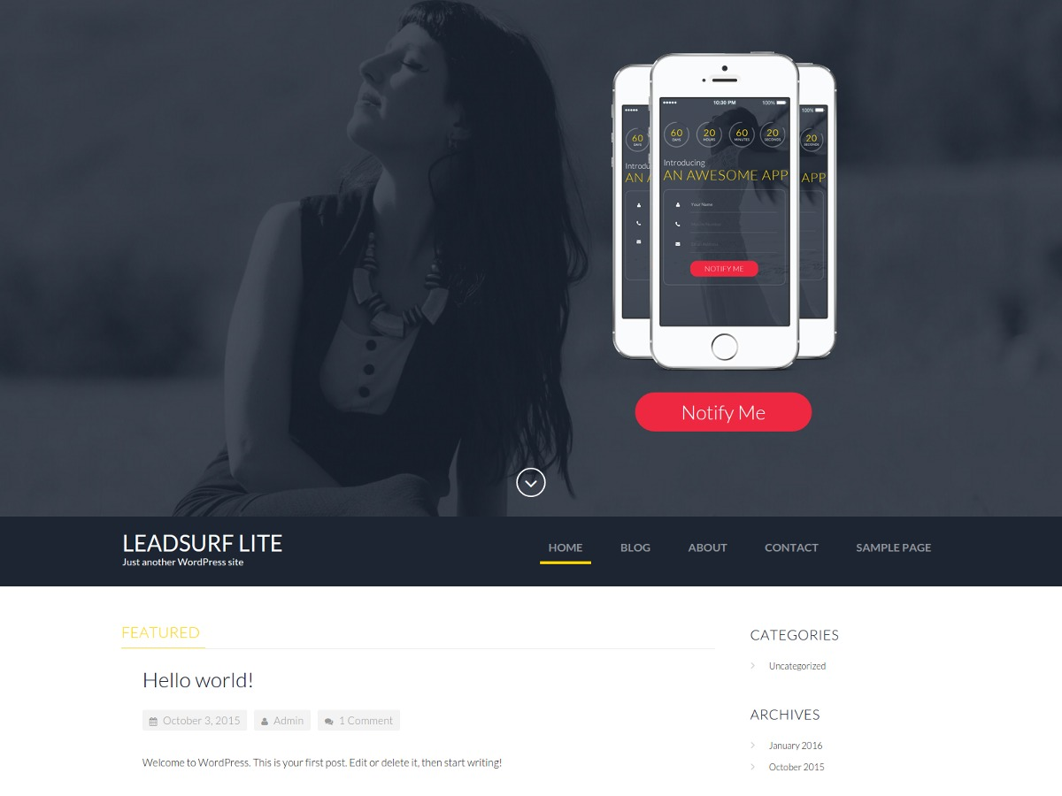 LeadSurf Lite template WordPress free