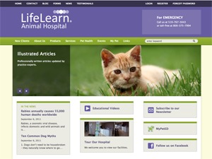 Lifelearn (Theme 7) WordPress theme