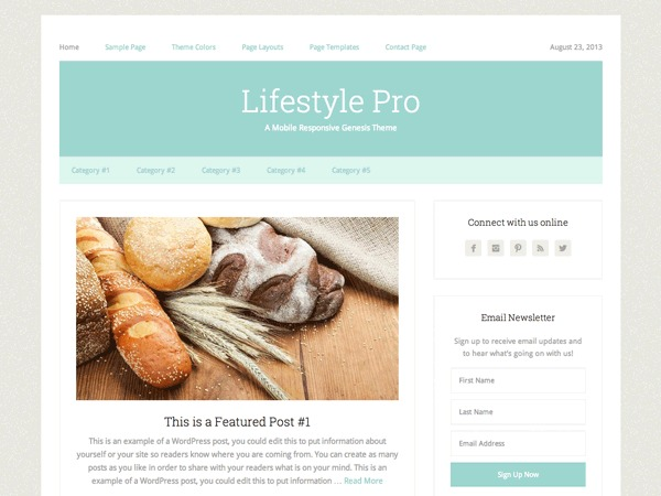 Lifestyle Pro Child Theme template WordPress