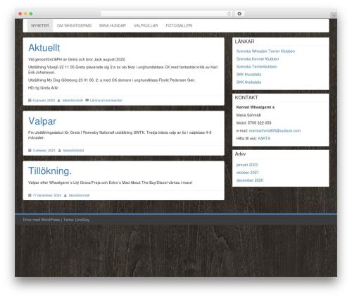 LineDay WordPress theme free download - wheatgerms.se