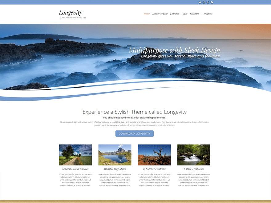 Longevity free WordPress theme