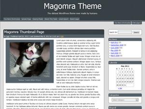 Magomra best WordPress theme