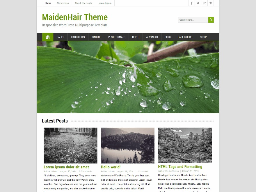 MaidenHair theme WordPress free