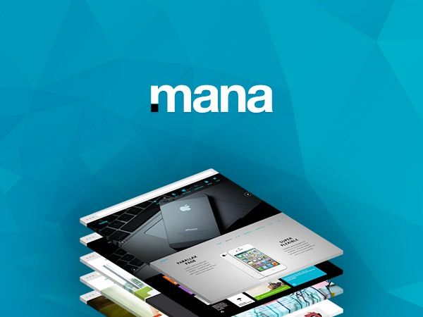 Mana business WordPress theme