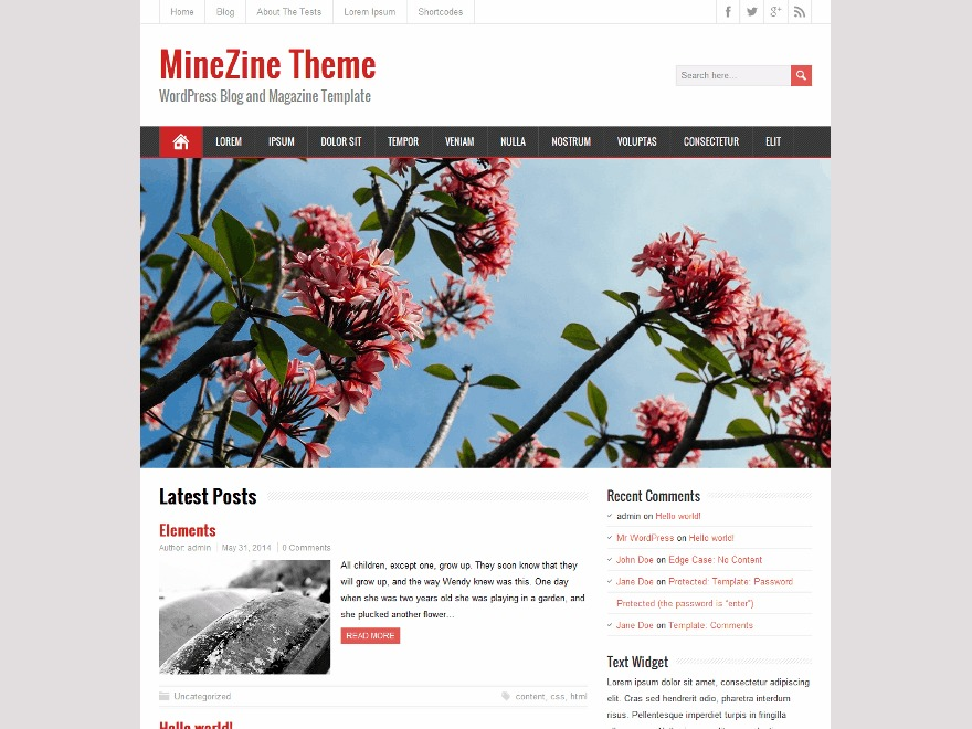 MineZine free WordPress theme