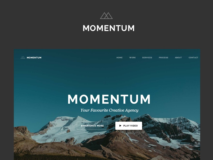 Momentum best portfolio WordPress theme