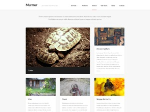 Murmur WordPress portfolio theme