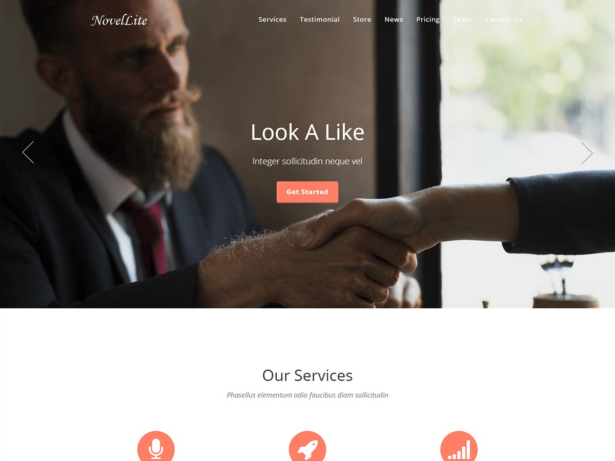 NovelLite WordPress theme image