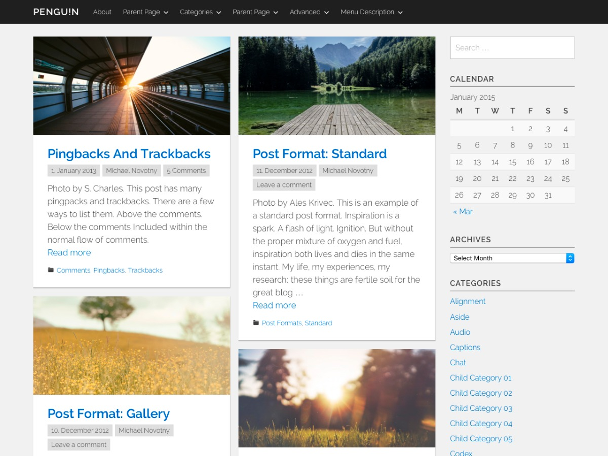 Penguin WordPress template free download
