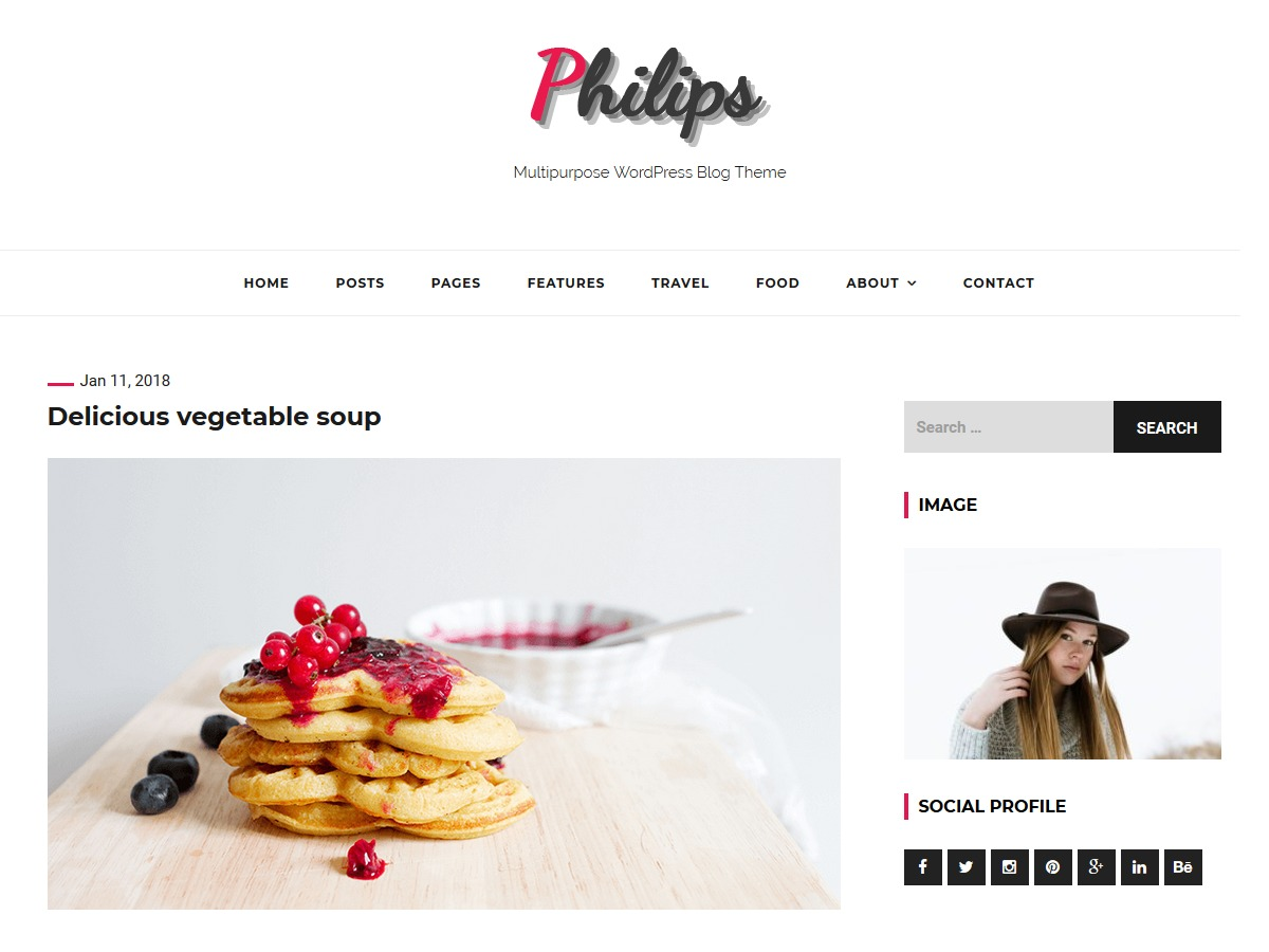 philips WordPress theme free download