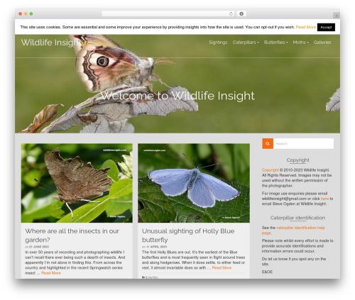 Pinnacle WordPress template for photographers - wildlifeinsight.com