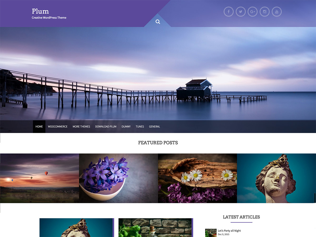 Plum free WP theme