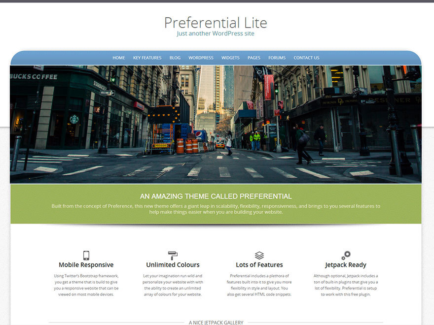 Preferential Lite WordPress template free download