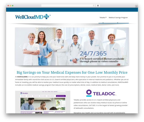 Free WordPress Newsletter plugin - wellcloudmd.com