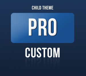 Pro Framework - Child WP template