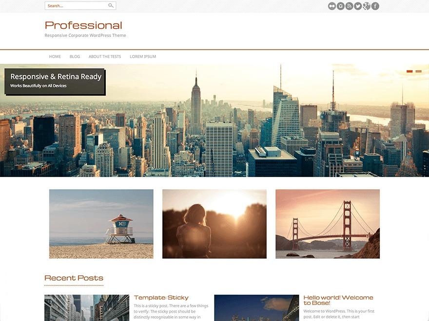 Professional newspaper WordPress theme