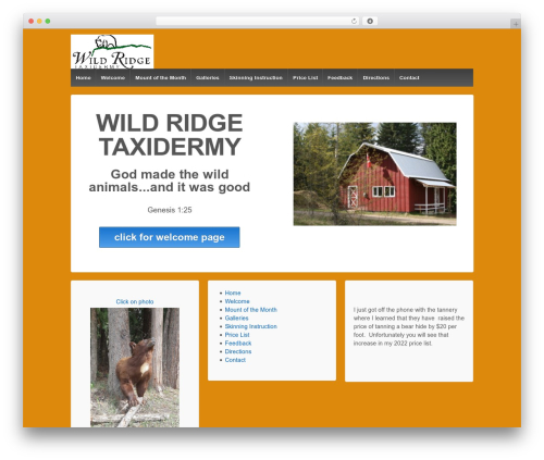 Responsive top WordPress theme - wildridgetaxidermy.com