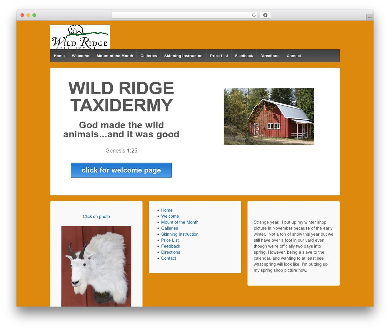 Responsive top WordPress theme - wildridgetaxidermy.com