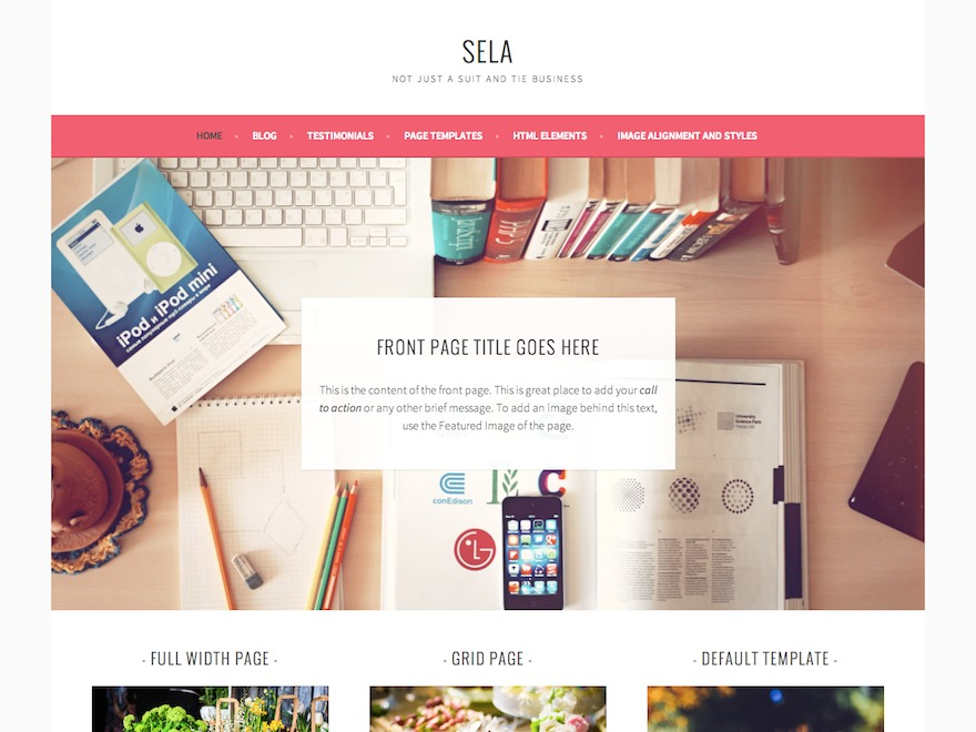 Sela WordPress template for business