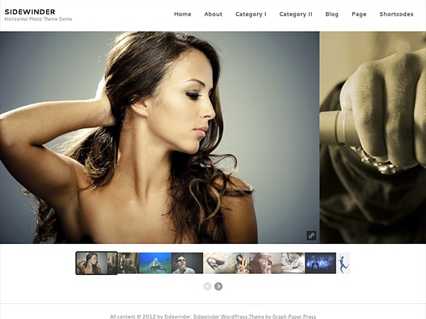Sidewinder WordPress theme design