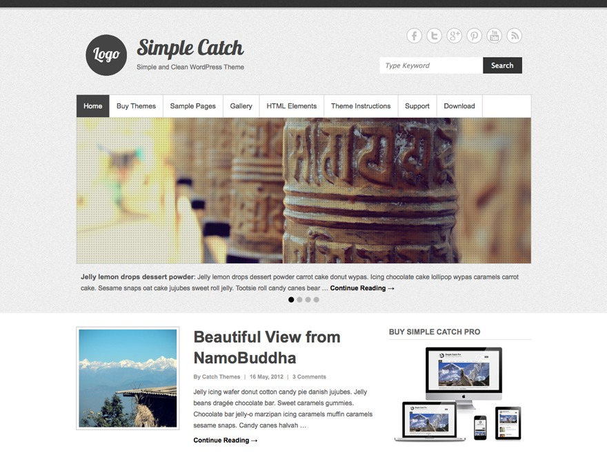 Simple Catch WordPress template free
