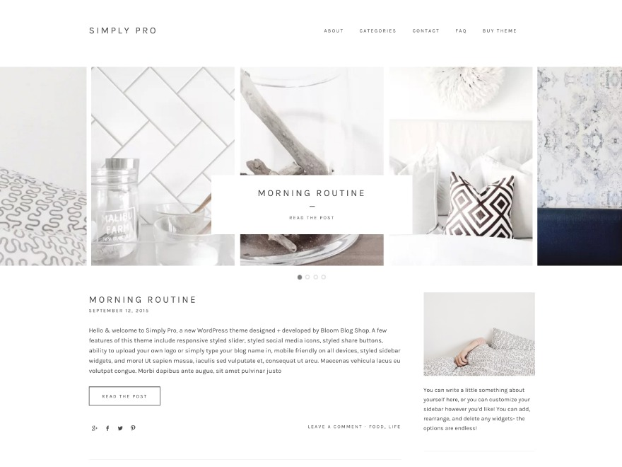 Simply Pro WordPress blog theme