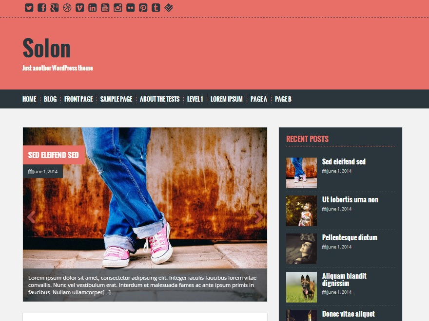 Solon best free WordPress theme