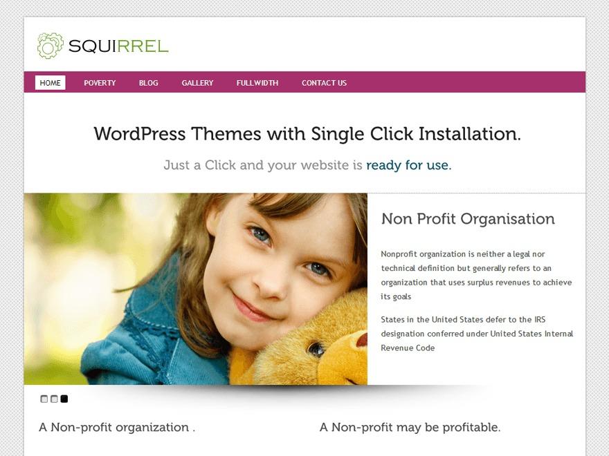 Squirrel Pro Responsive Theme theme WordPress