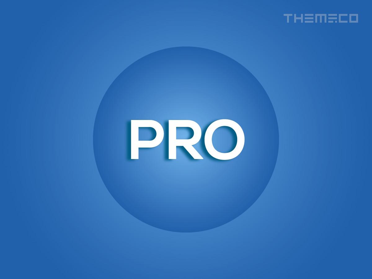 Theme WordPress Pro