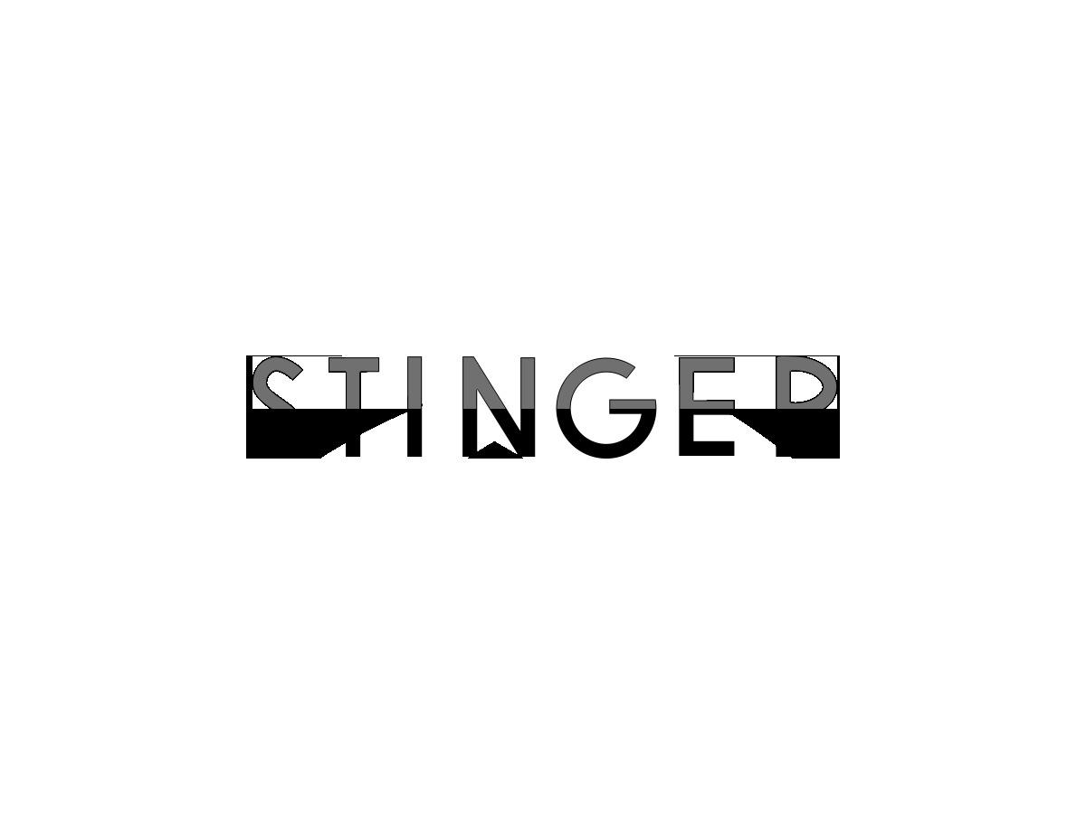 Theme WordPress STINGER8