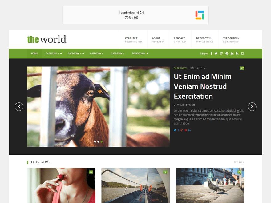 TheWorld WordPress blog theme