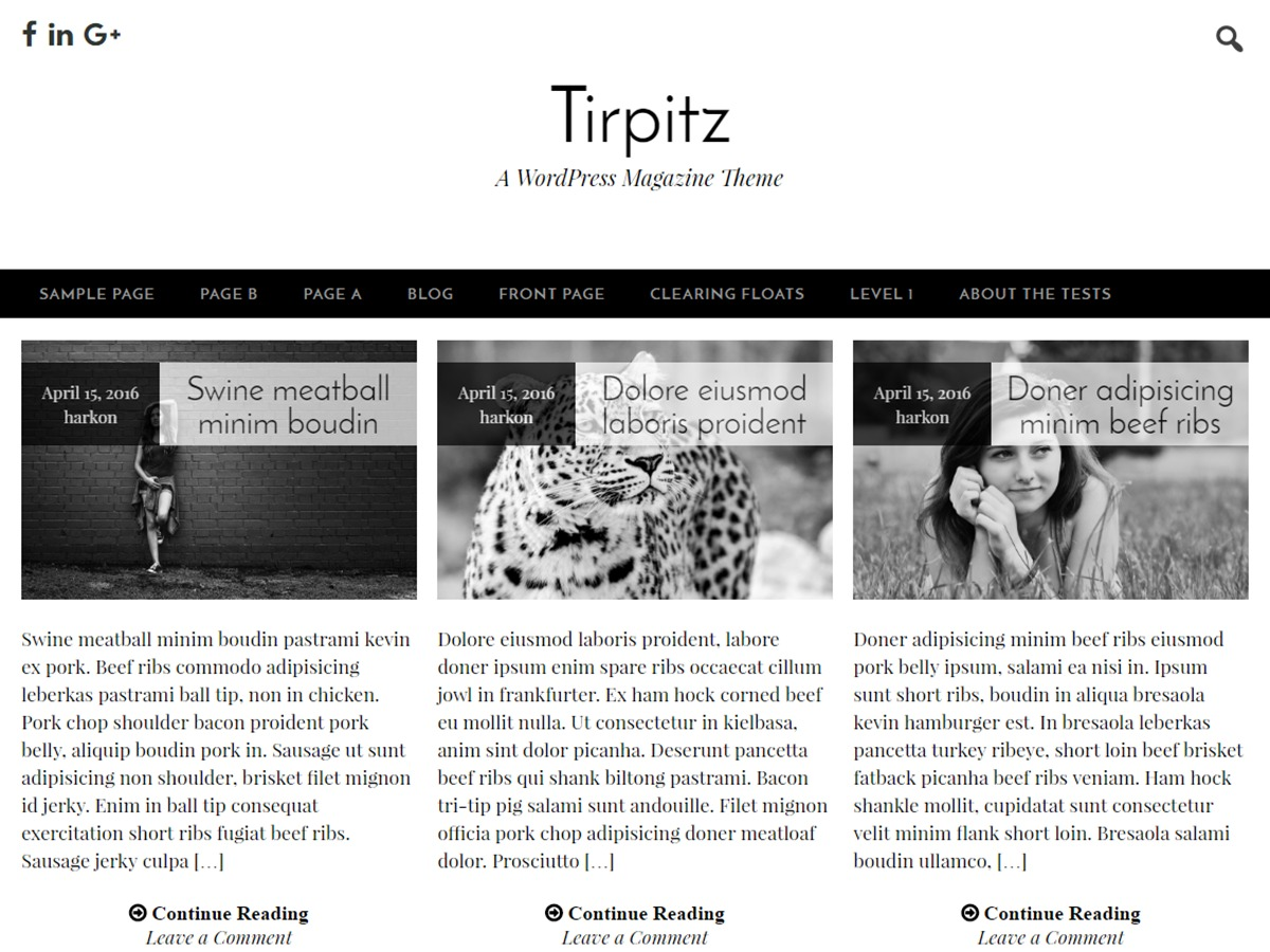 Tirpitz free website theme