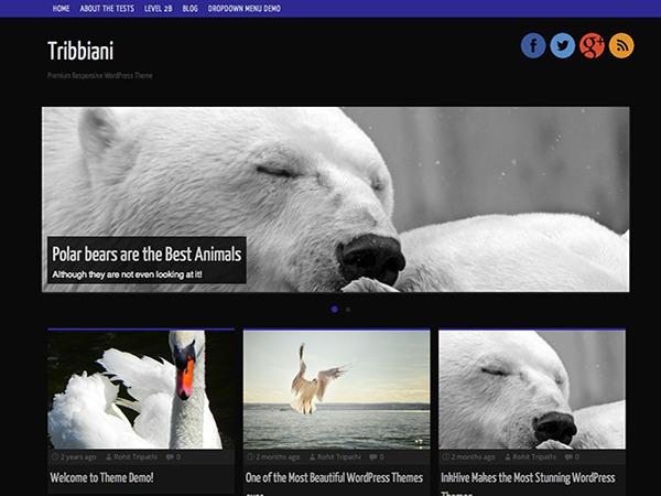 Tribbiani WordPress free download