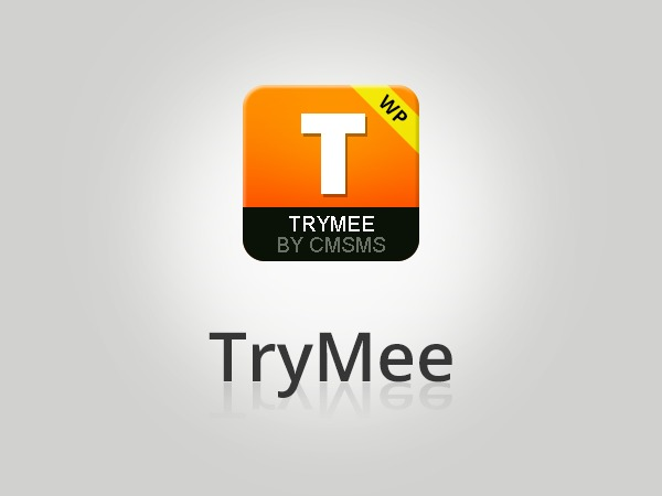 TryMee WordPress movie theme
