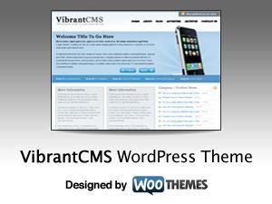Vibrant CMS WP theme