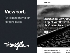 Viewport best WordPress theme