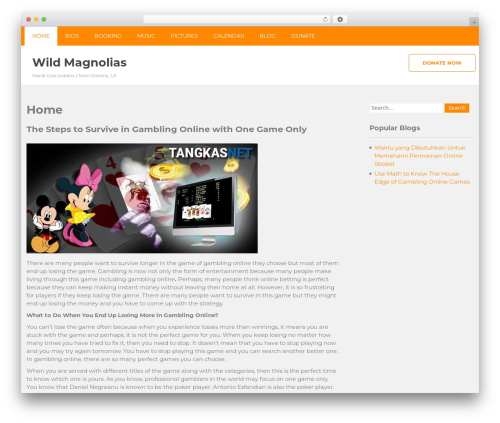 Vision Lite theme free download - wildmagnolias.net