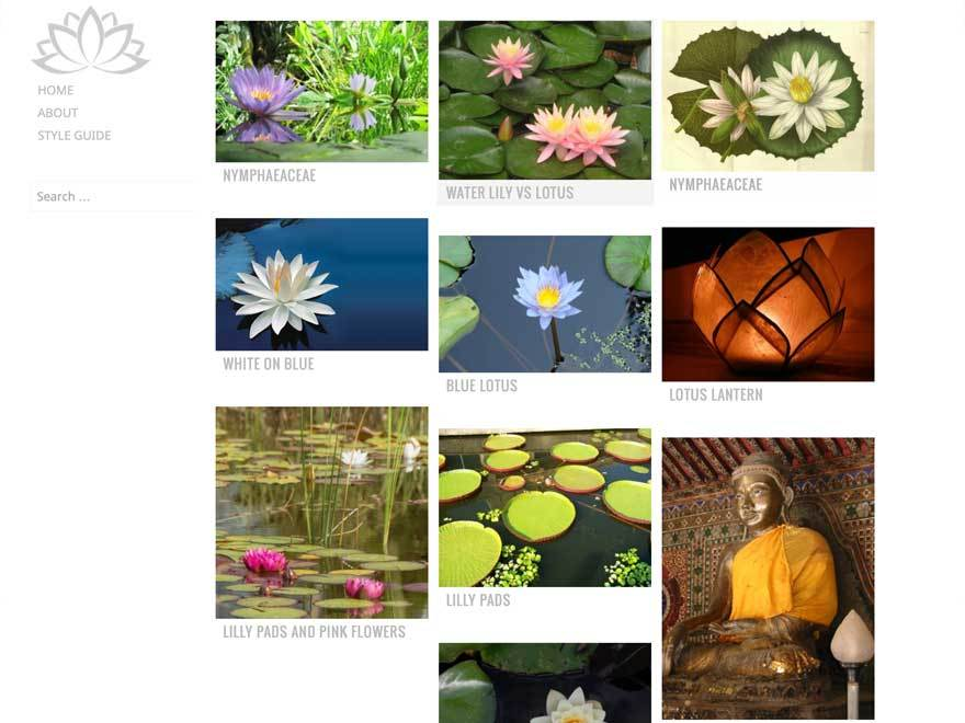 Water Lily WordPress theme image