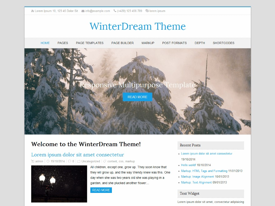 WinterDream theme WordPress free