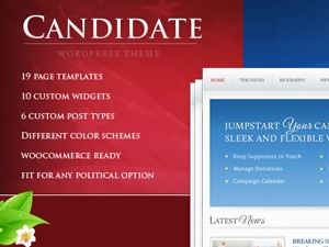 WordPress template Candidate