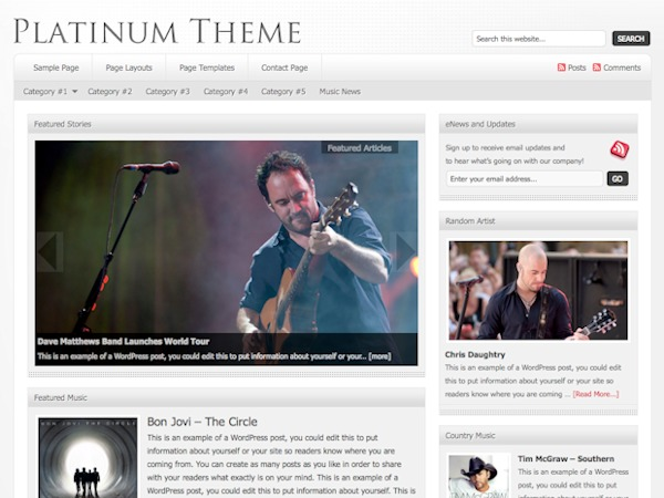 WordPress template Platinum Child Theme