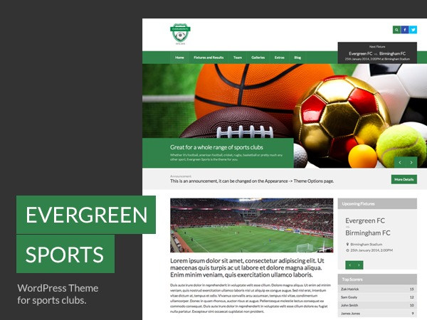 WordPress theme Evergreen Sports