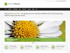 WordPress theme Natural Theme
