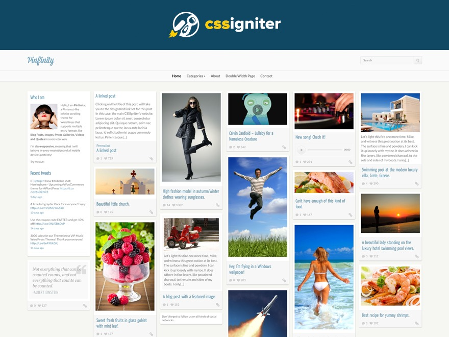 WordPress theme Pinfinity
