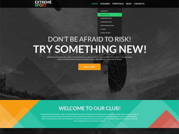 WordPress theme theme51105
