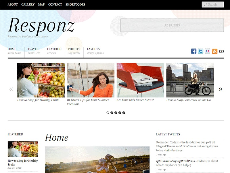 WordPress theme Themify Responz