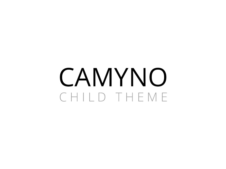 WordPress website template Camyno Child Theme