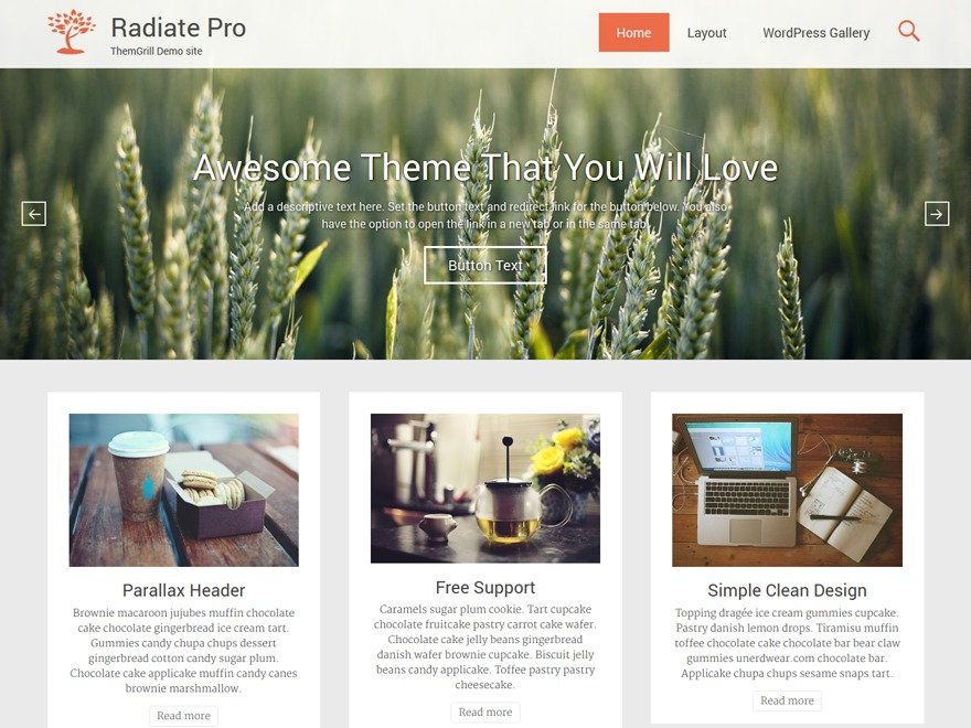WordPress website template Radiate Pro