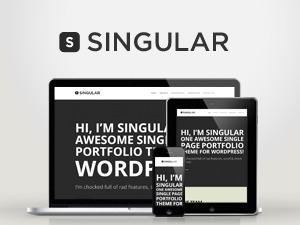 WP Singular best portfolio WordPress theme
