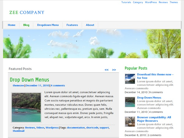 zeeCompany WordPress template for business